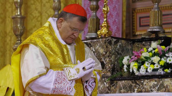 Cardinal Burke doubts the validity of Benedict XVI's Renunciation