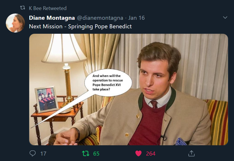Has Diane Montagna joined the PPBXVI Movement?