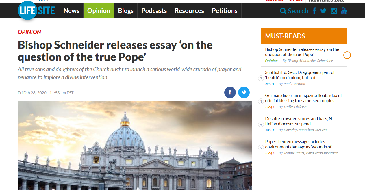 Bishop Schneider, your Essay is a porridge of falsehood and presumption!
