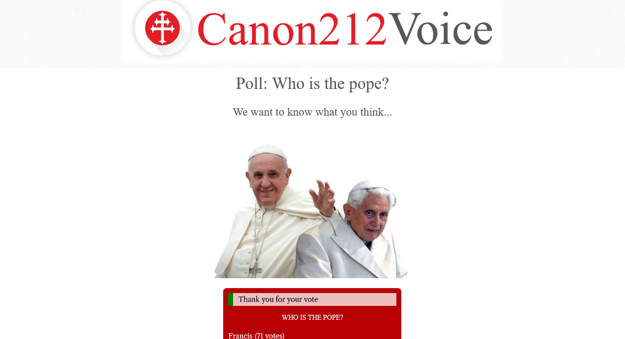 Canon212.com Poll:  Only 25% of Catholics believe Bergoglio is the Pope